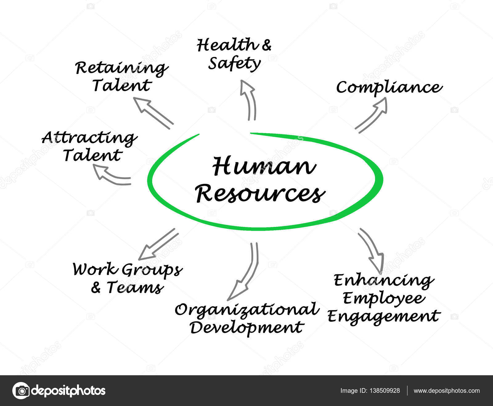 hight resolution of diagrama de recursos humanos foto de stock