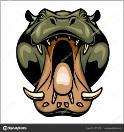 hippopotamus head isolated on white vector illustration vector by digital clipart [ 963 x 1024 Pixel ]