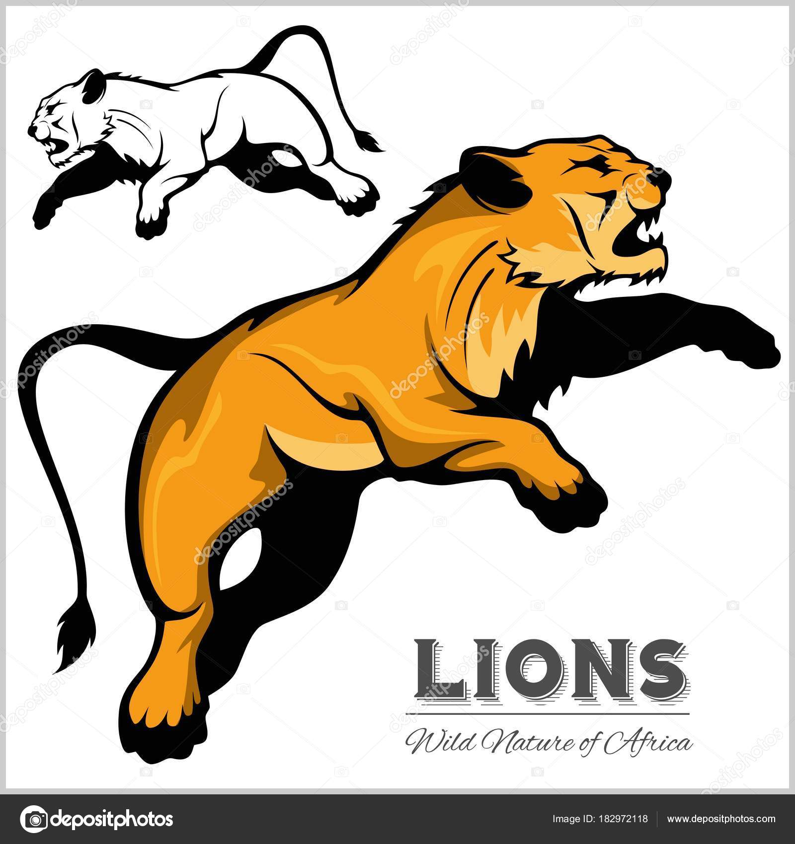 hight resolution of lioness color and black white image vector isolated illustration on white vector by digital clipart