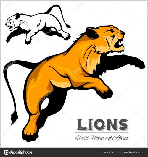 small resolution of lioness color and black white image vector isolated illustration on white vector by digital clipart