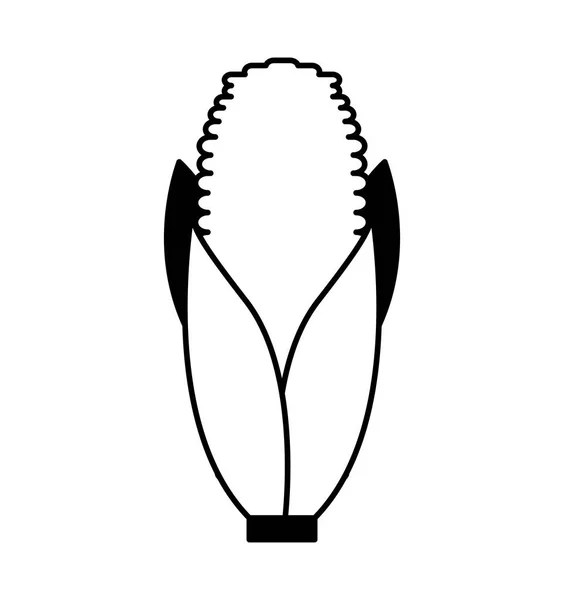 corn cob isolated icon design — Stock Vector © yupiramos