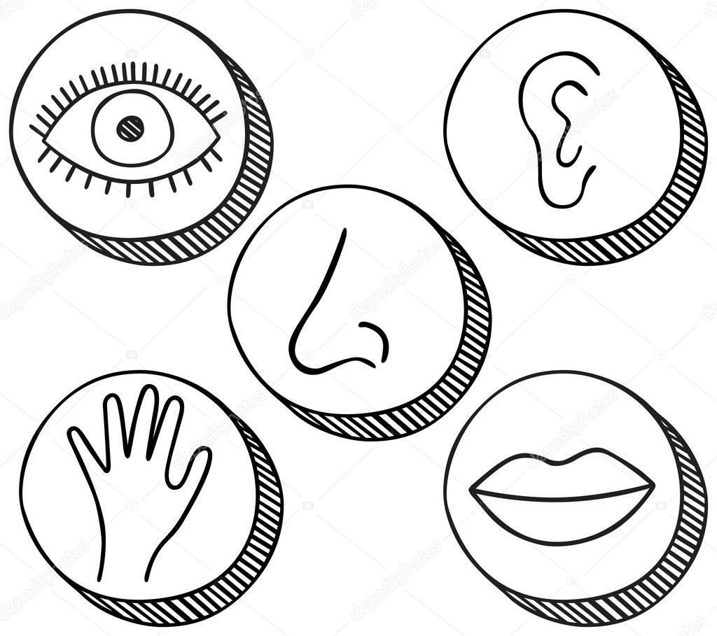 Funf Sinne Symbole