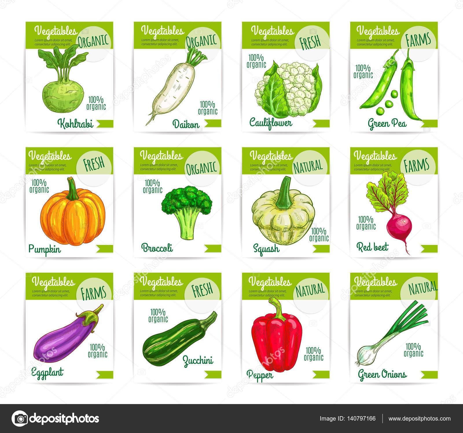 Verduras Legumes Vector Preco Conjunto De Rotulos De