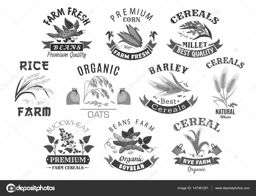 Grain And Cereal Product Farm Market Vector Icons
