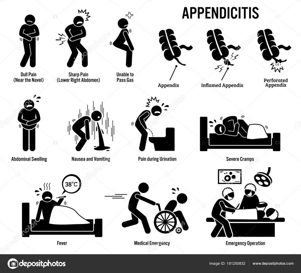 Appendix Appendicitis Icons Pictogram Diagrams Depict