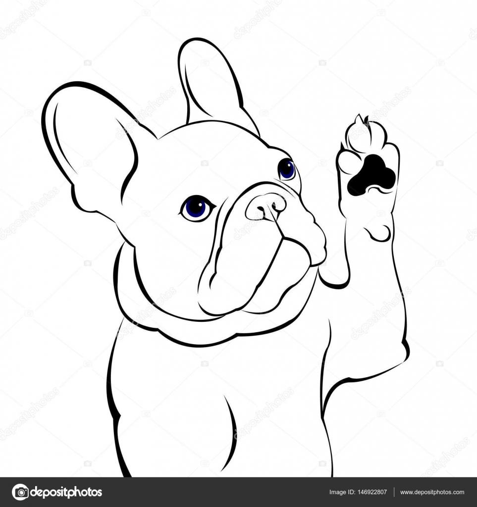Hund Vektor Rasse niedlich Haustier Tier Bulldogge