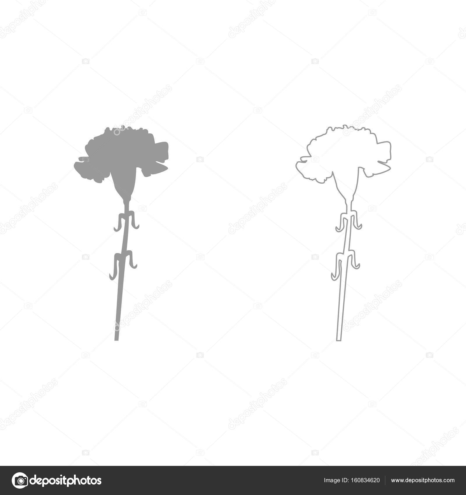 hight resolution of carnation grey set icon