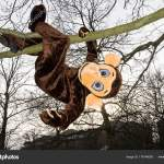 Low Angle View Person Monkey Costume Hanging Branch Tree Stock Photo C Imagesource 178146050