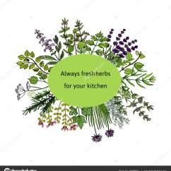 Kitchen Herb Kit Lower Cabinets 新鲜厨房草本 图库矢量图像 C Foxyliam 147095041 图库矢量图片