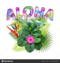 Aloha Hawaii Aloha Shirt Design Best Creative Design ...