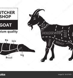 vector illustration goat cuts diagram or chart goat black silhouette stock vector [ 1600 x 1124 Pixel ]