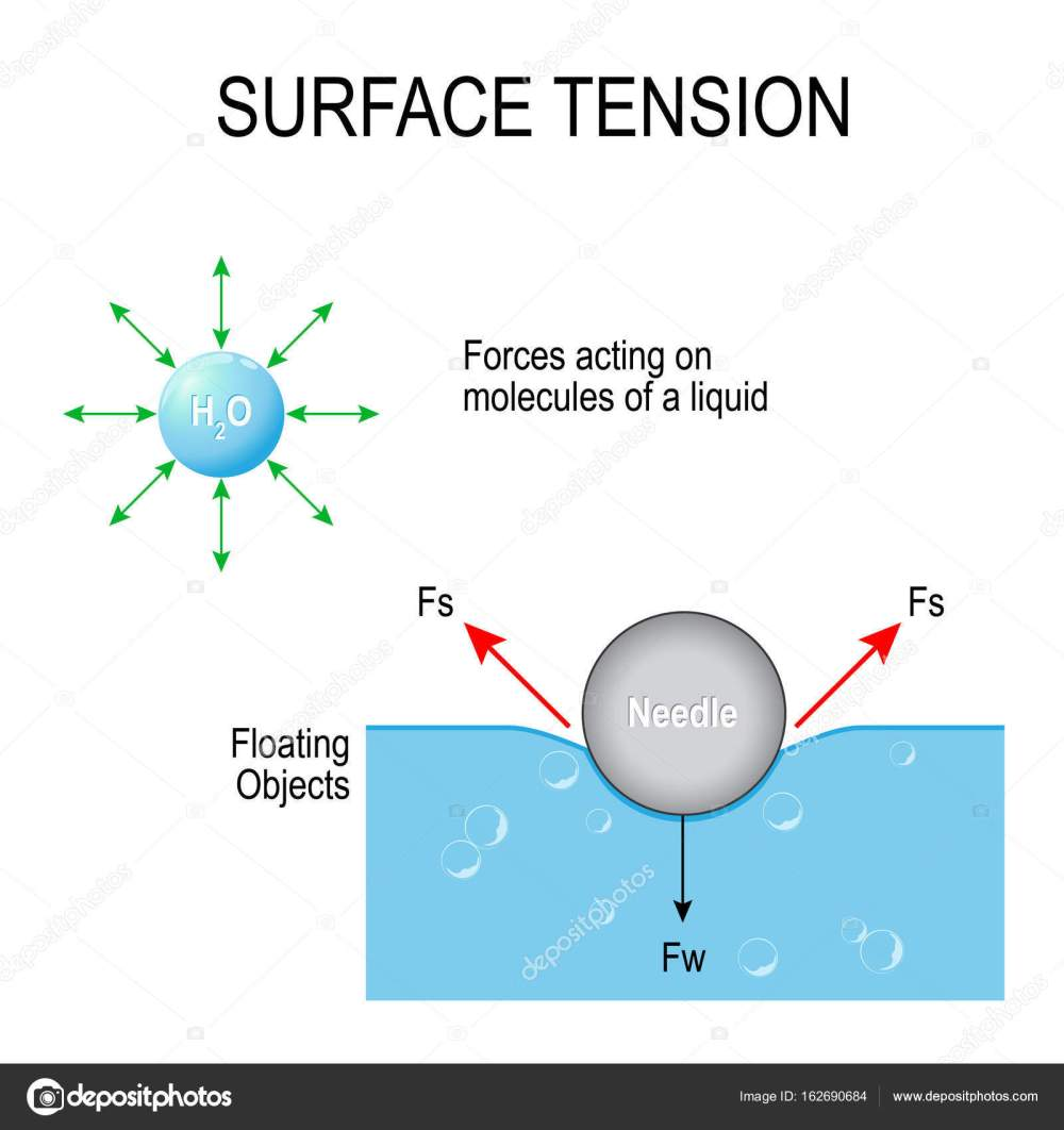 medium resolution of surface tension vector diagram stock vector