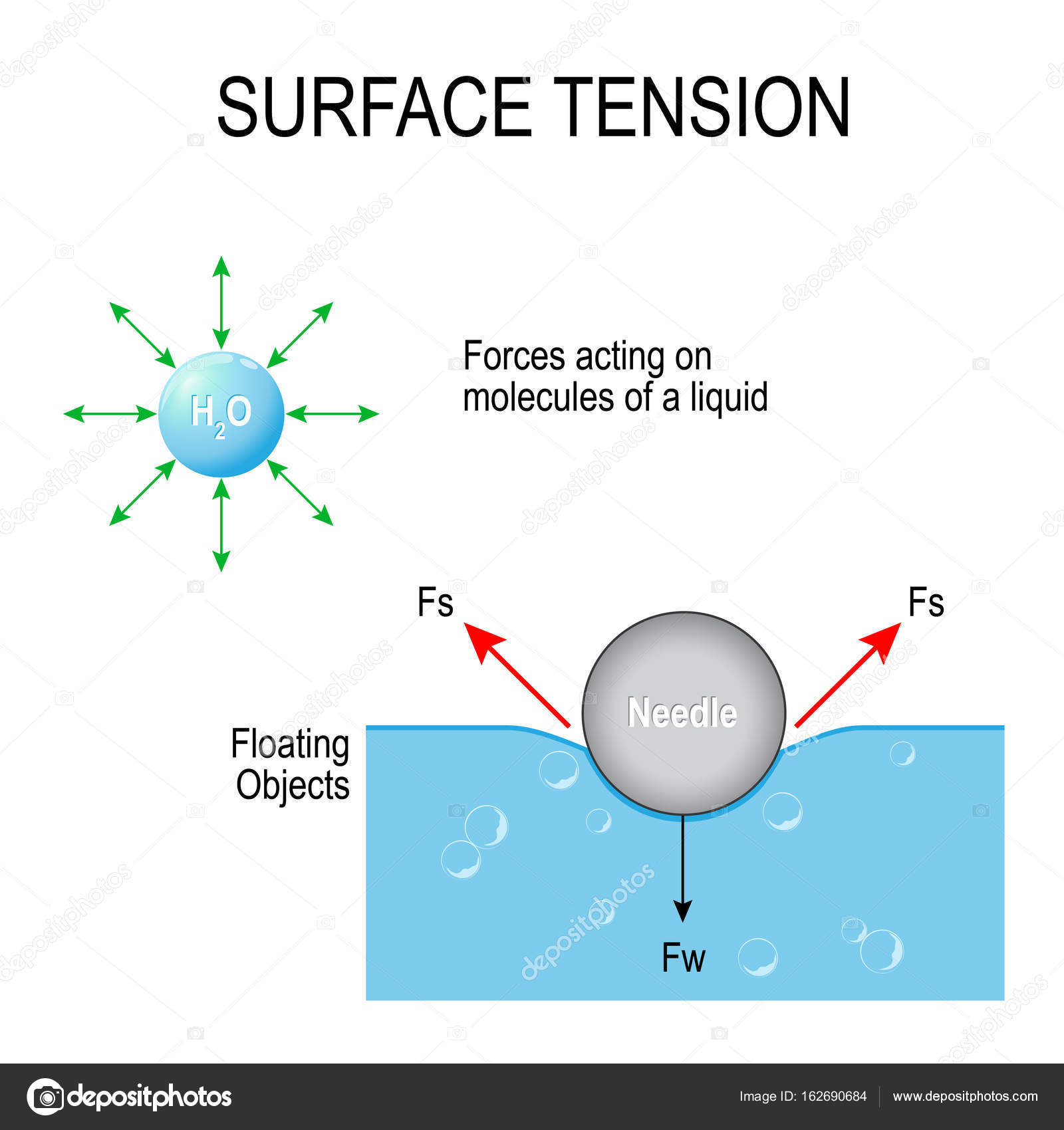 hight resolution of surface tension vector diagram stock vector