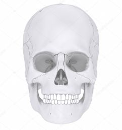 human skull bones anatomy parts diagram photo by cliparea [ 853 x 1024 Pixel ]
