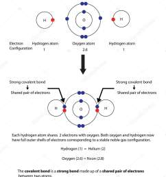 diagram to illustrate covalent bonding in water with a fully lab stock illustration [ 1333 x 1700 Pixel ]