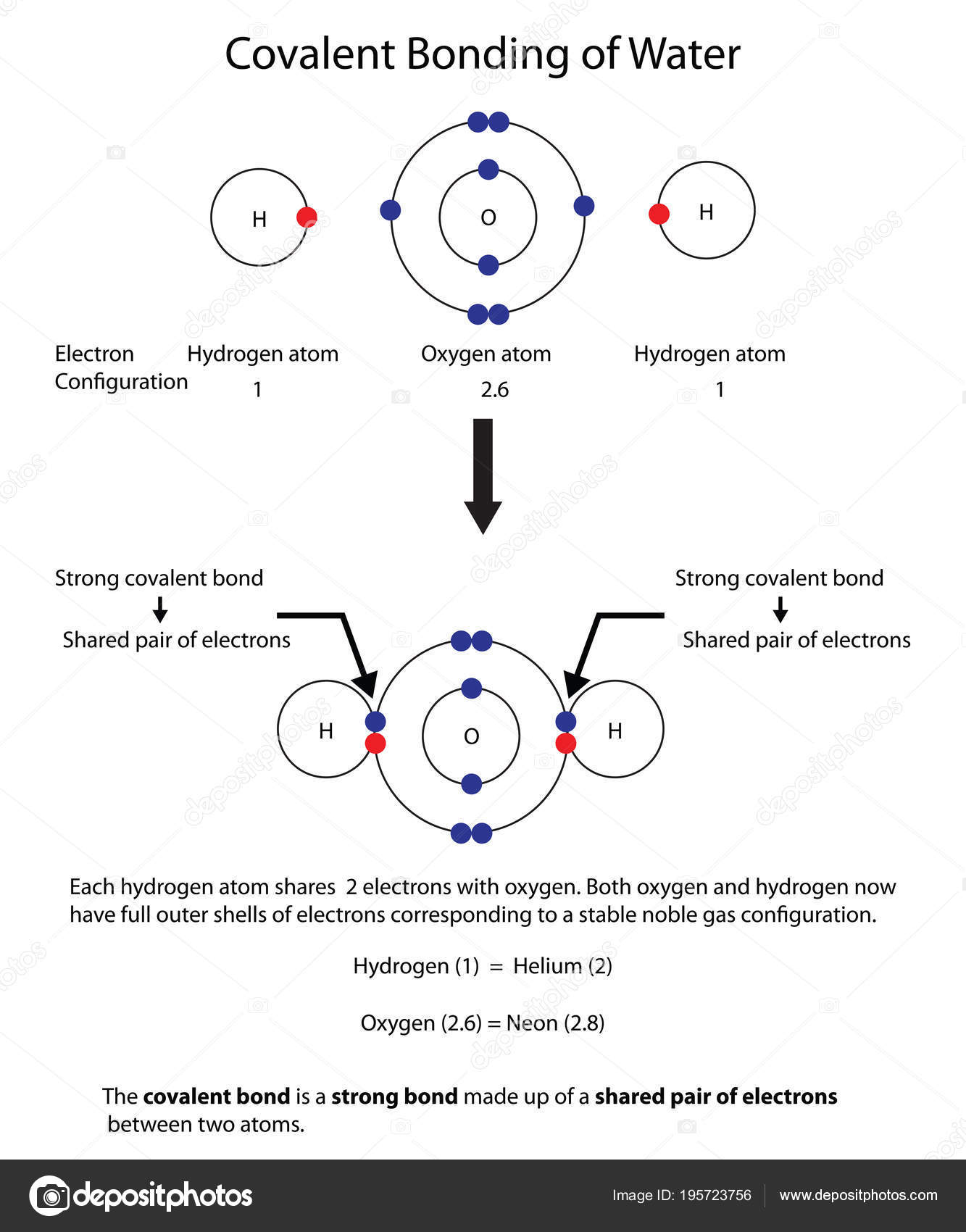 hight resolution of diagram to illustrate covalent bonding in water with a fully lab stock illustration