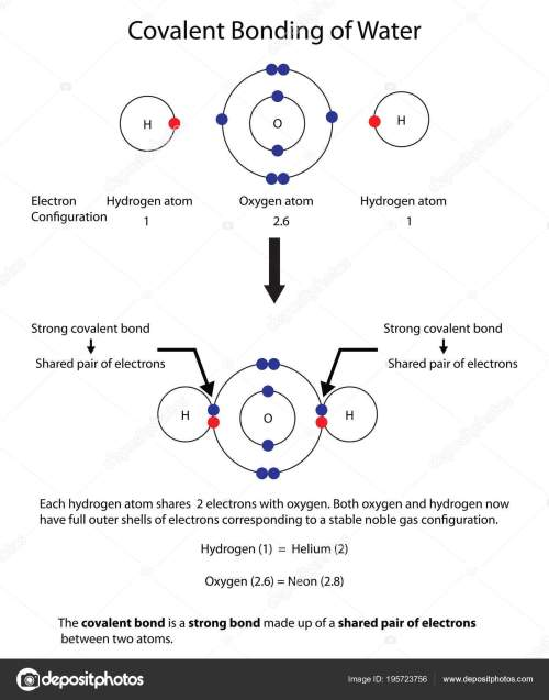 small resolution of diagram to illustrate covalent bonding in water with a fully lab stock illustration