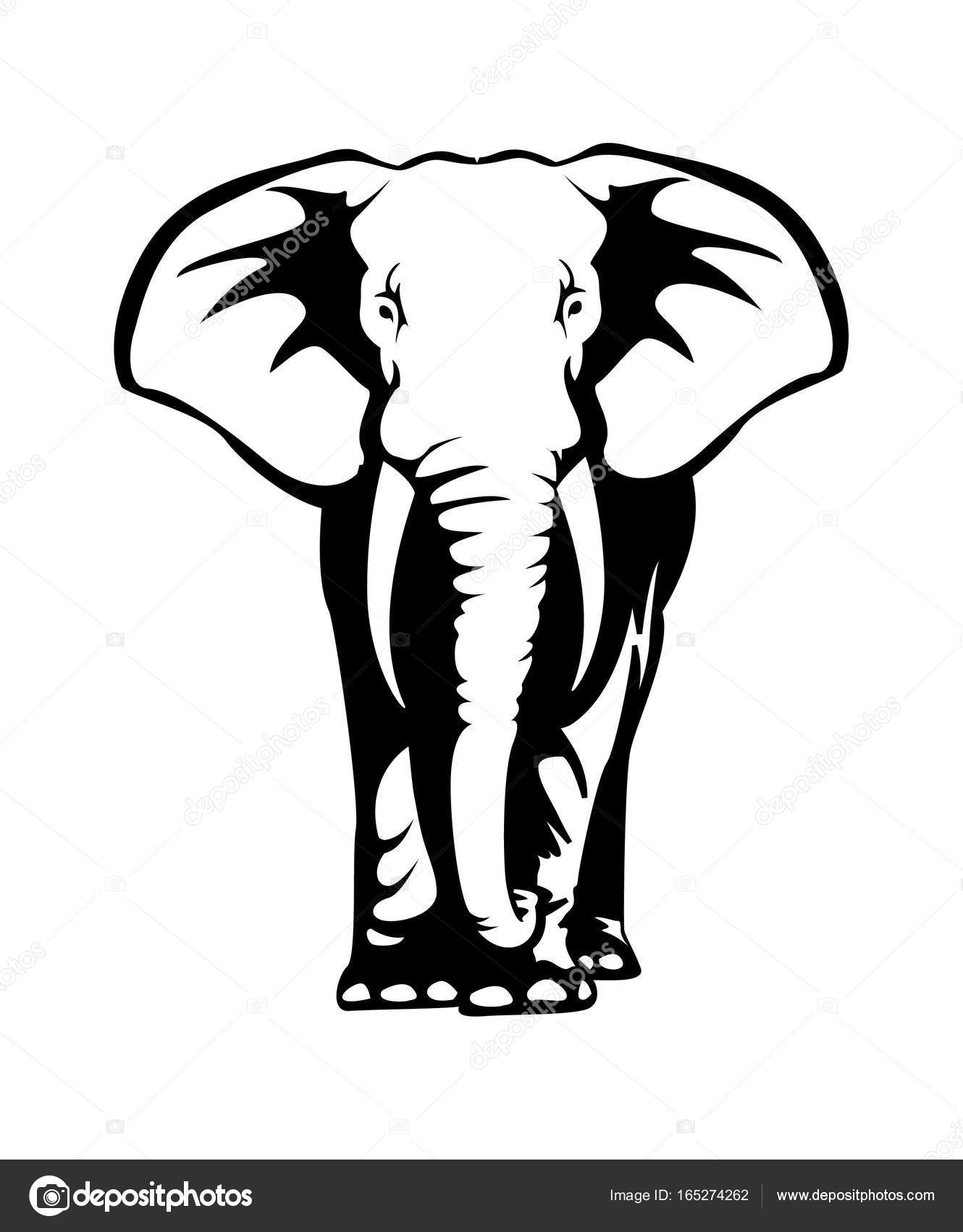 Illustration Dessin Elephant