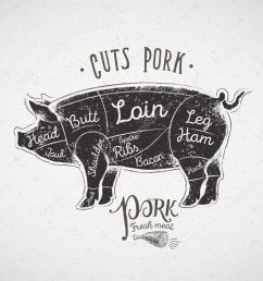 pig butcher cutting diagram stock vector [ 1023 x 791 Pixel ]