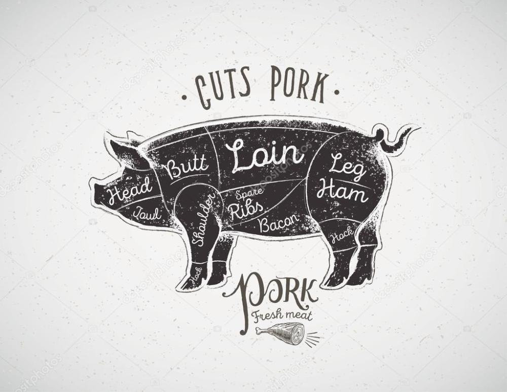 medium resolution of pig butcher cutting diagram stock vector