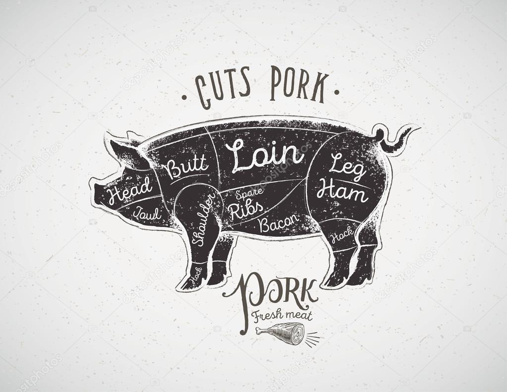 hight resolution of pig butcher cutting diagram stock vector