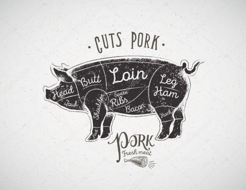 small resolution of pig butcher cutting diagram stock vector