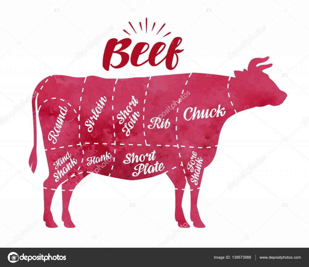 cow meat diagram rj 45 wiring schéma dělení masa krav. Řeznictví, býk, hovězí vektorové ilustrace — stock vektor ...