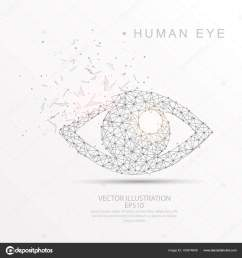eye shape digitally drawn low poly wire frame stock vector [ 1600 x 1700 Pixel ]