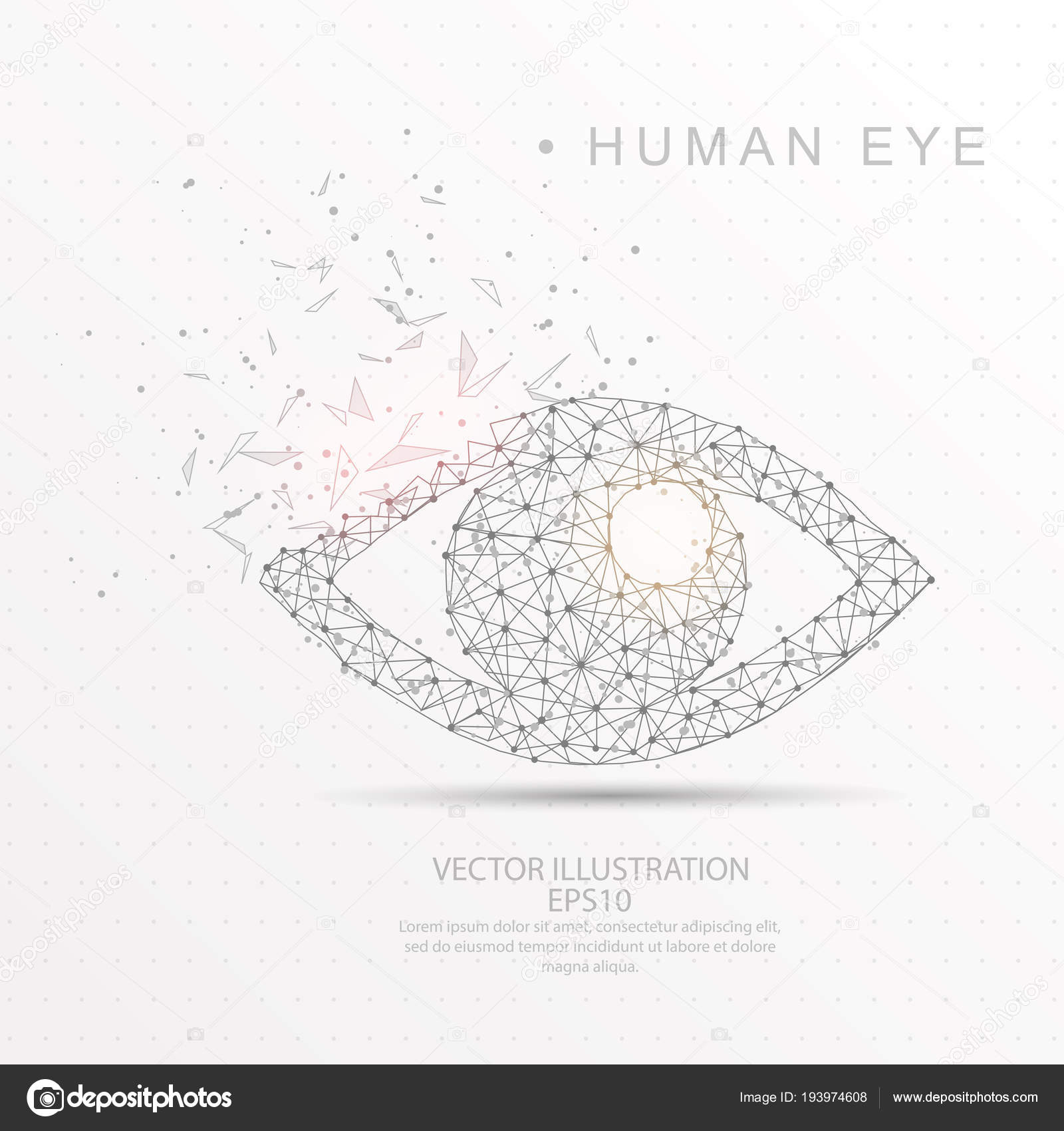 hight resolution of eye shape digitally drawn low poly wire frame stock vector