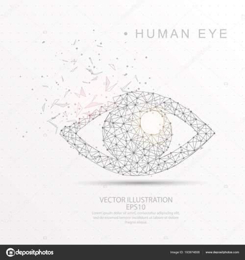 small resolution of eye shape digitally drawn low poly wire frame stock vector