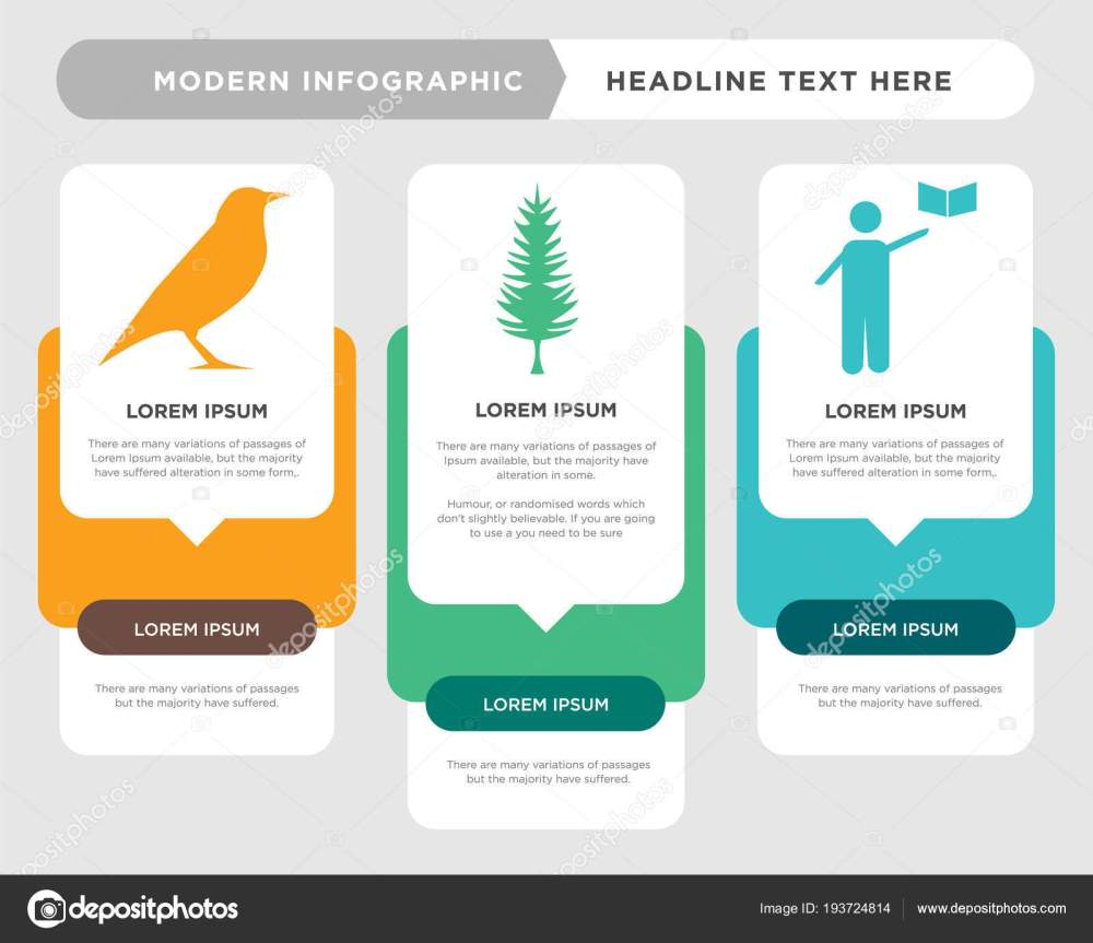 medium resolution of grammar business infographic template the concept is option step with full color icon can be used for tall pine tree diagram infograph chart business