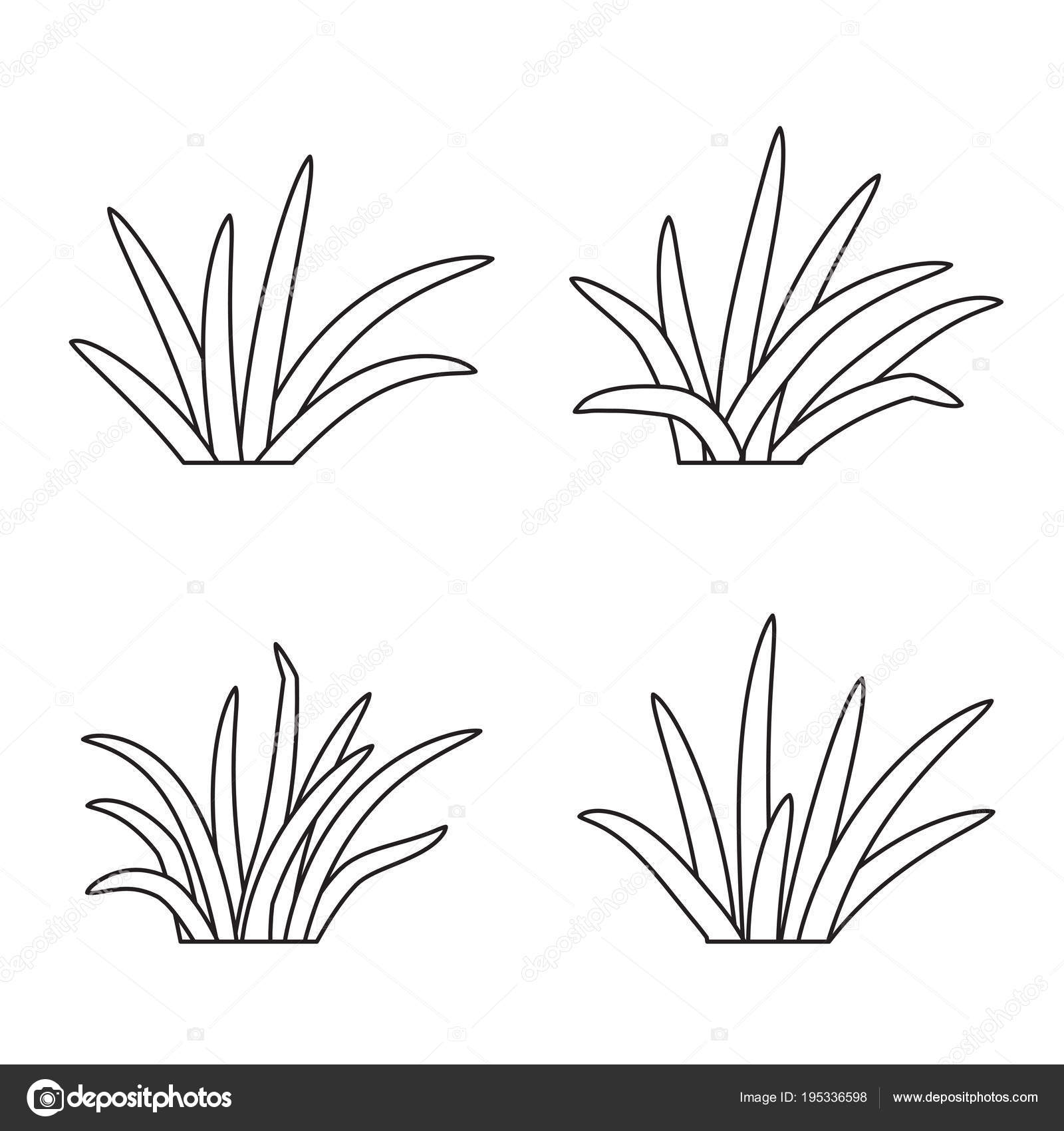 Set Of Grass Tufts Clip Art Transparent Background