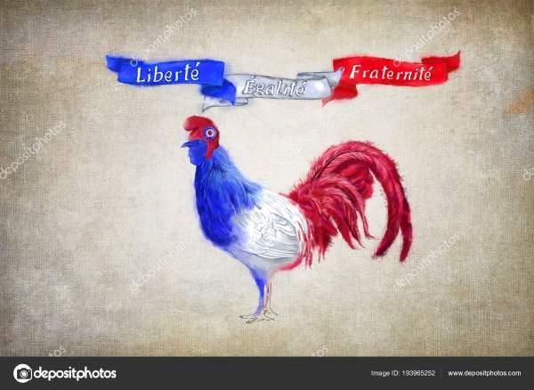 Bastille Day Celebration Patriotic Symbols Tricolor