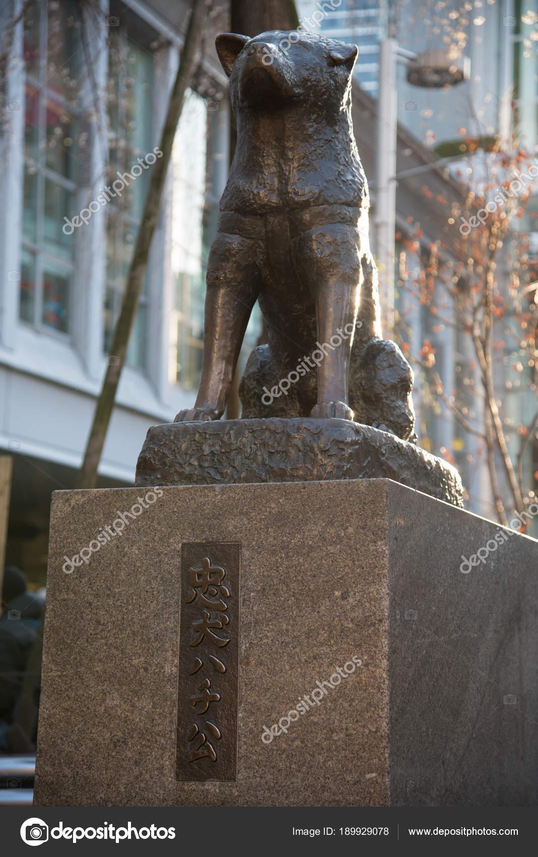 八公紀念雕像在澀谷 這是青銅雕像紀念八公 著名的忠實的秋田犬 — 圖庫社論照片 © Shawn.ccf #189929078