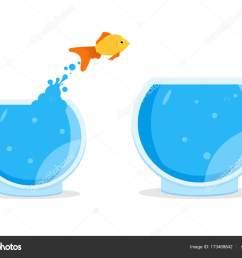 saltar fuera del taz n de fuente del goldfish vector de stock [ 1600 x 1167 Pixel ]