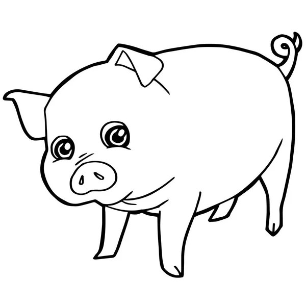 Pig Coloring Page — Stock Vector © Malyaka #129524520