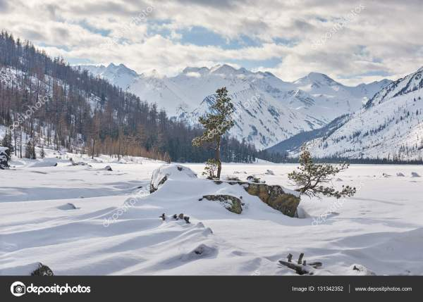 Beautiful Winter Landscape Altai Mountains Siberia Russia. Stock Yury7taranik