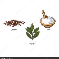 Kitchen Herb Kit Counter Tops 矢量平面草图香料 调味品草药集 图库矢量图像 C Sabelskaya 170107158 图库矢量图片