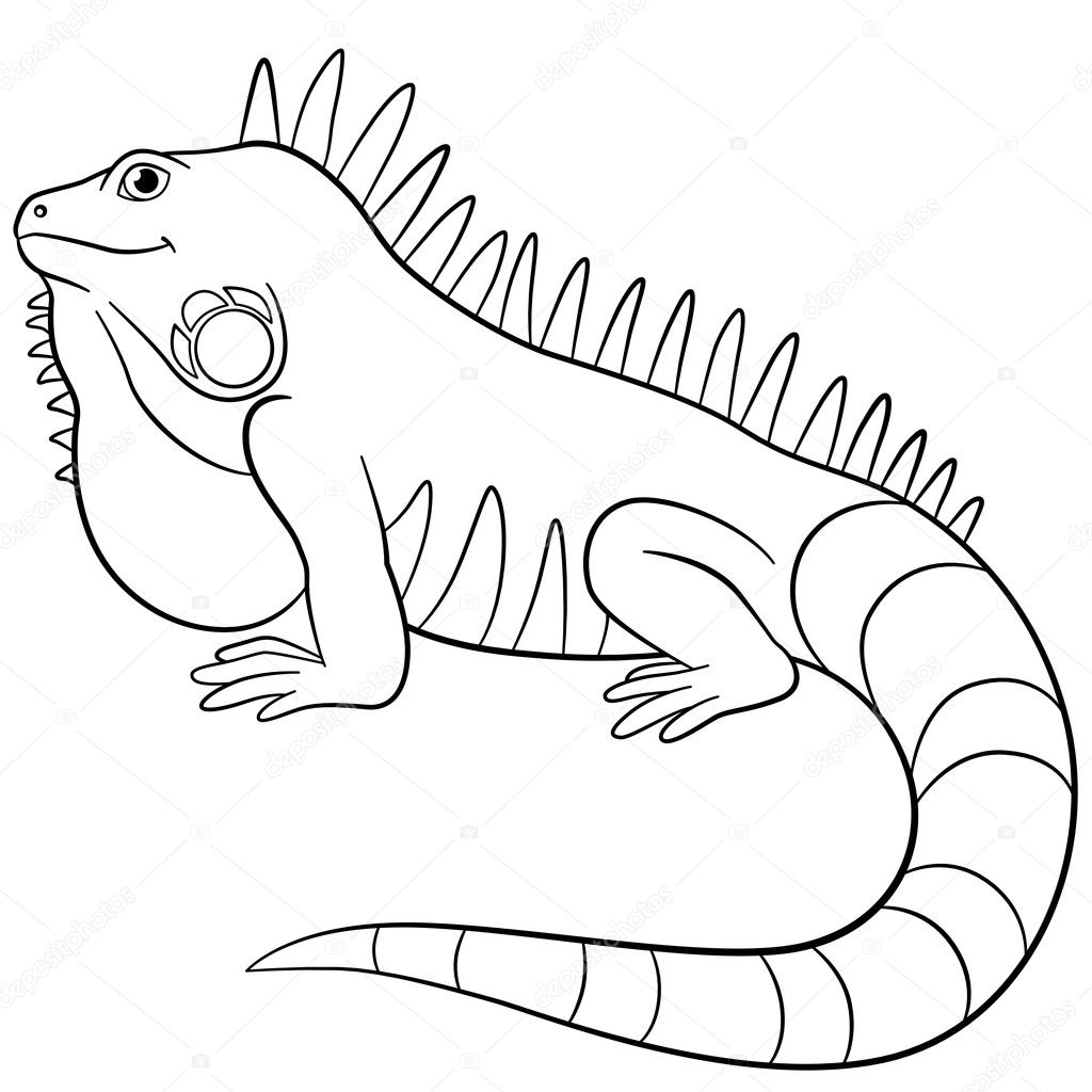 Cute Iguana Coloring Page