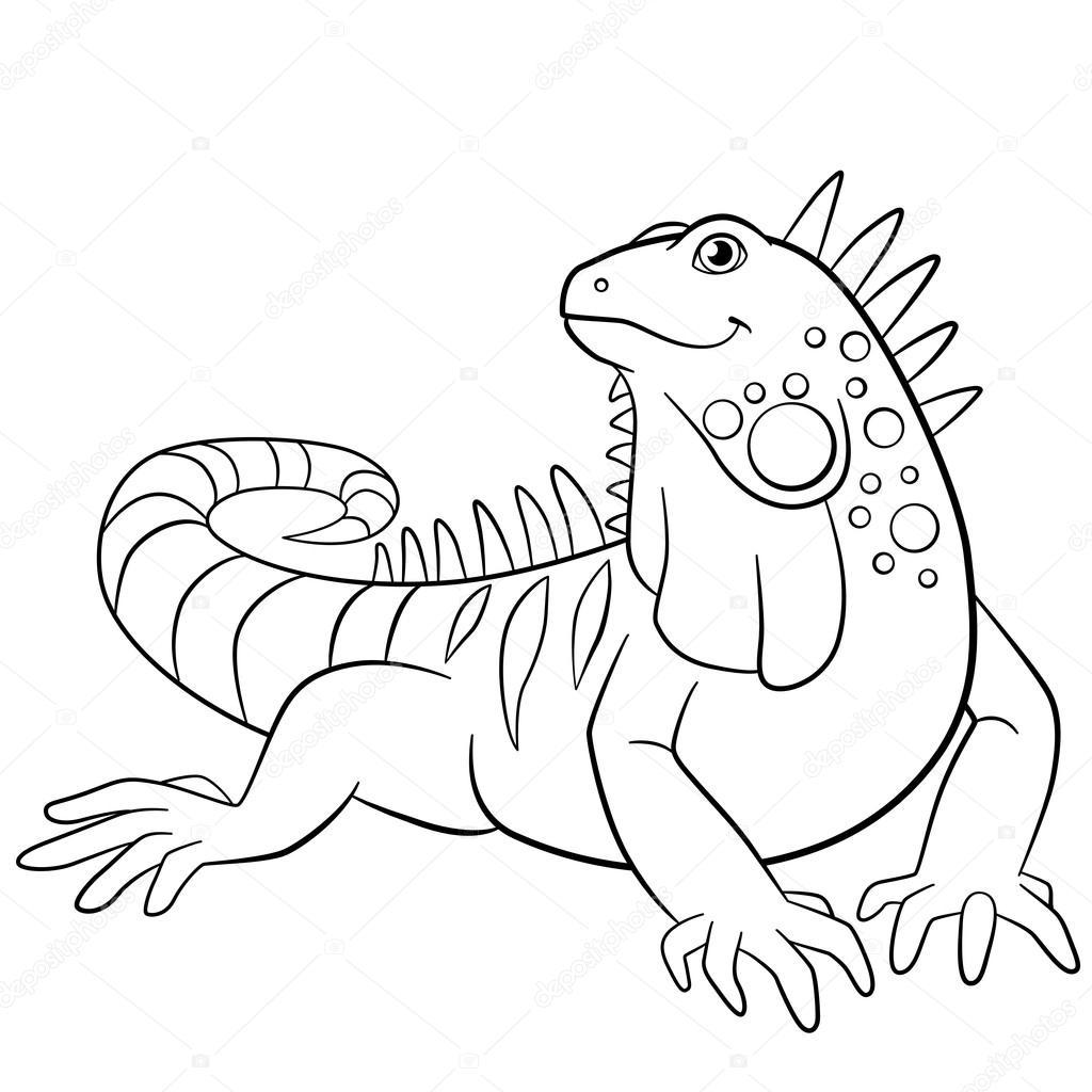Iguana Coloring Page Coloringnori