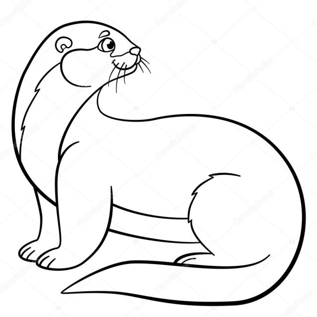 Coloring pages. Little cute otter smiles. Stock Vector Image by