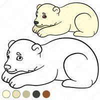 Malvorlagen. kleines süßes Eisbärbaby. — Stockvektor © ya ...