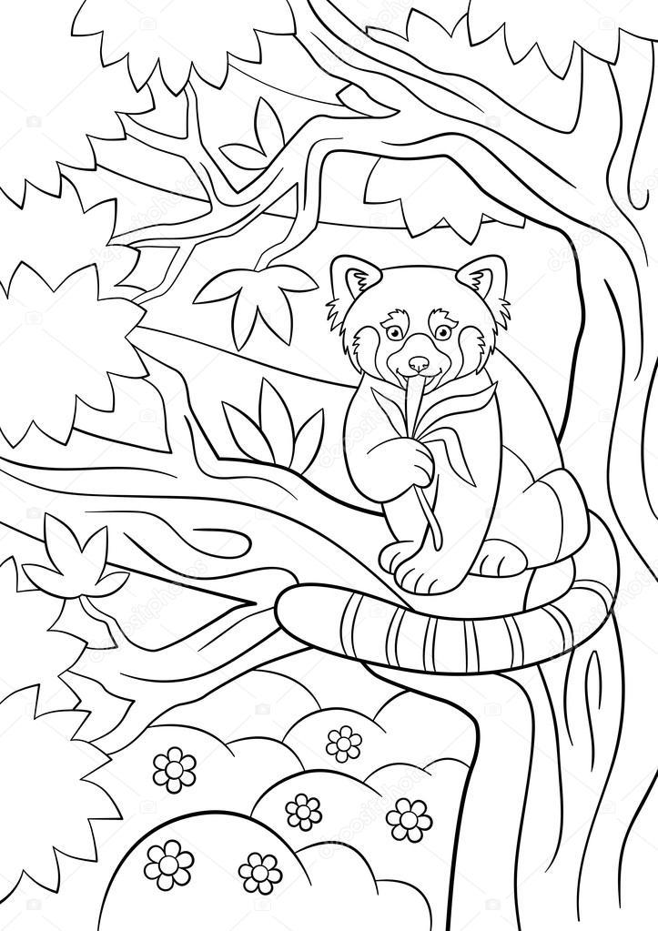 Disegni da colorare. Piccolo panda rosso sveglio mangia le