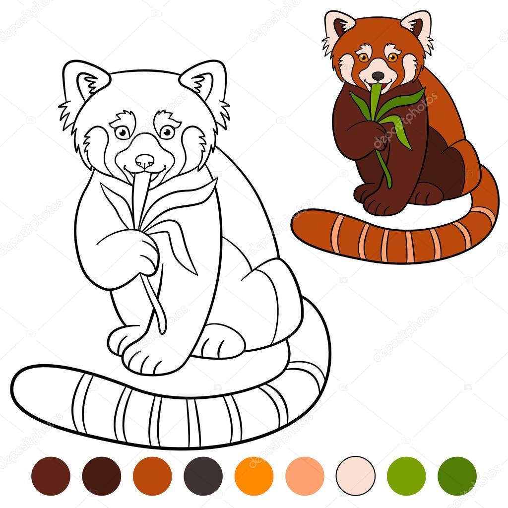 Malvorlage Roter Panda Coloring and Malvorlagan