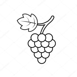 ✅ Grape with leaf icon outline vector Wine logo Graphic wine dessert symbol Black grapevine icon on isolated background Bunch of grape line style Single vector illustration eps10 premium vector in Adobe