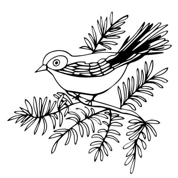 Sketch of a beautiful bird on a branch with flowers on a