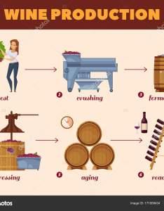 Wine production process cartoon flowchart  stock vector also rh depositphotos