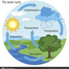 Water Cycle Diagram With Explanation Pt100 Sensor Wiring Colour  Stock Vector 3xy 186424660