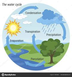 vector schematic representation of the water cycle in nature illustration of diagram water cycle cycle water in nature environment vector by 3xy [ 1600 x 1700 Pixel ]
