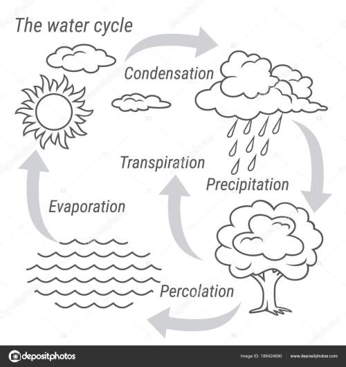 small resolution of vector schematic representation of the water cycle in nature illustration of diagram water cycle cycle water in nature environment vector by 3xy